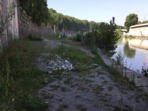 Un tratto della banchina del Tevere