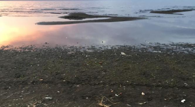 Caldo e siccità: un 2017 da brividi