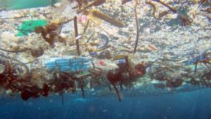 plastiche disperse
