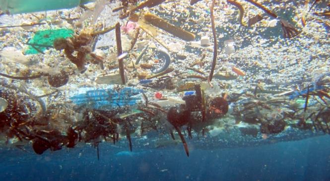 Le plastiche disperse nell'ambiente possono rilasciare gas serra